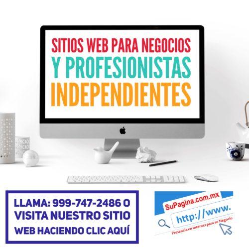 Sitios Web profesionales para negocios SUPAGINA