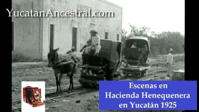 Hacienda Henequenera en Yucatán 1925